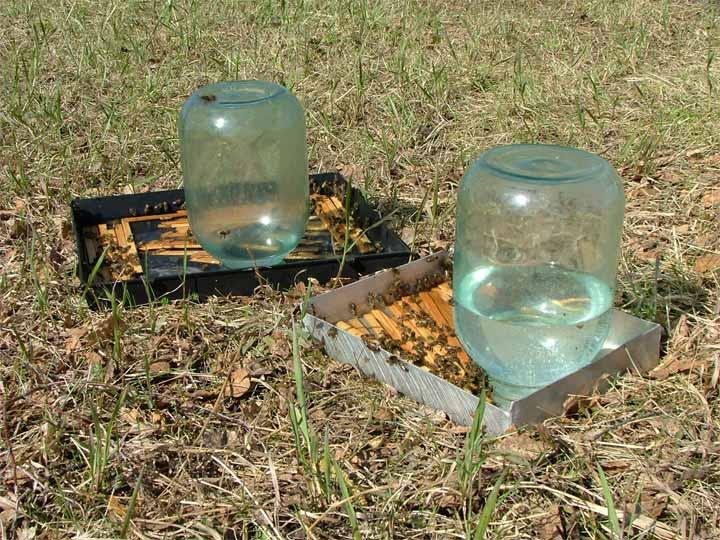 Поилки для пчел фото